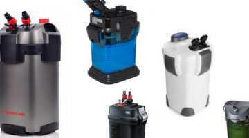 Best Canister Filters for over 55 gallon and turtle tank